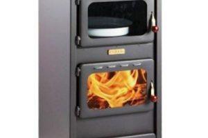 chimenea de leña con horno